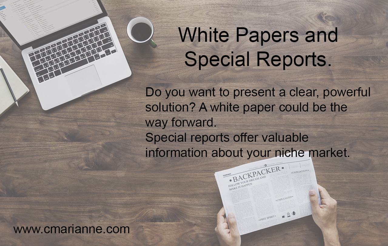 White Papers and Special Reports Add Value to Existing and Potential Clients . . . and Helps Keep You In Mind As A Great Service Provider.